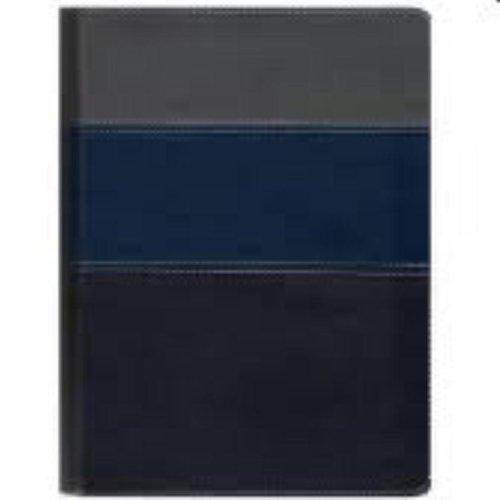 Biblia Thompson - Capa Luxo Azul E Cinza