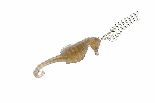 Miniblings Seepferdchen Kette Halskette 45cm Seepferd Ozean Aquarium Meer braun