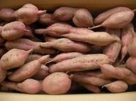 種子島安納芋 B品4キロ 安納紅