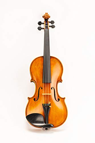 D Z Strad Model 220 Violin with Dominant strings, bow, case, rosin and shoulder rest - Open Clear Tone (4/4 - Size)