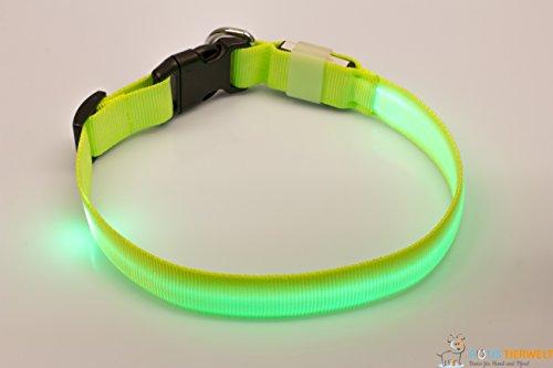 Rutis Tierwelt LED Leuchthalsband Basic 1 per USB aufladbar, Größe L, Grün