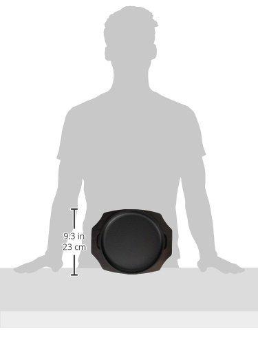 中部トキワステーキ皿大22cm丸型日本製PTK10001