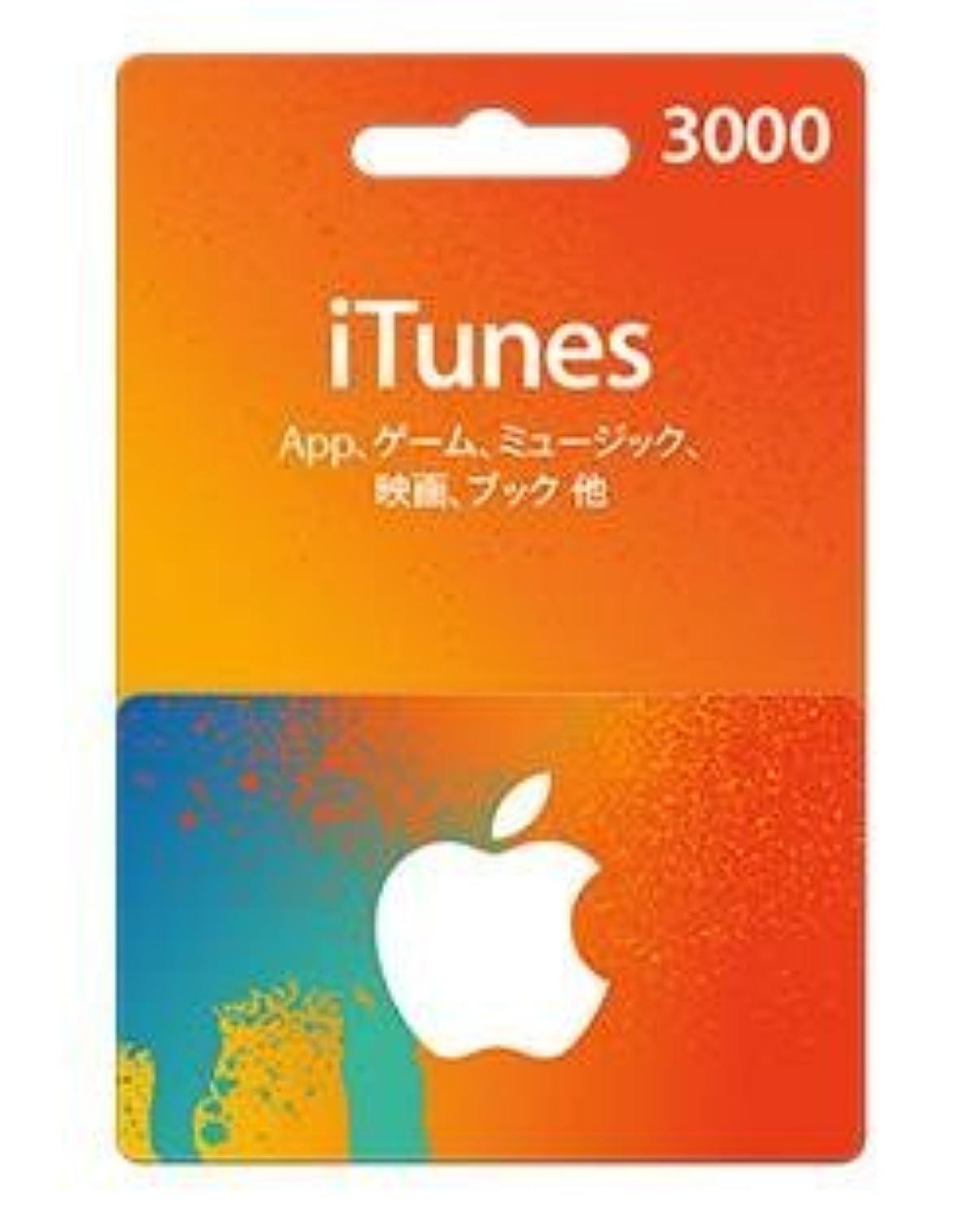 優先肉のお茶APPLE(アップル) iTunes Card アイチューンズ カード - 3,000円