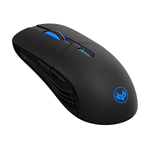 RIIEYOCA LED Wireless Mouse, Silent Rechargeable Mouse, Portable 2.4G Wireless Mouse with USB Receiver, 3 Adjustable DPI for PC, Laptop, Computer, Notebook (Black)