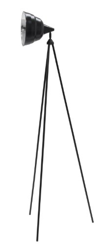 Studio Designs 12010 Photography Lamp with Stand and 13-watt CFL Bulb, Black