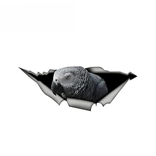 ZQZL 3D Grey Parrot Pegatina de Coche Divertida de la Etiqueta compuesta de la Etiqueta compuesta del estilín de Vinilo de Vinilo Lindo pájaro pájaro decalado, 13cm * 5 cm