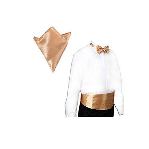 WS WS 3tlg SET Herren Fliege Kummerbund Einstecktuch Business Anzug Hochzeit BOX (Bronzegold)