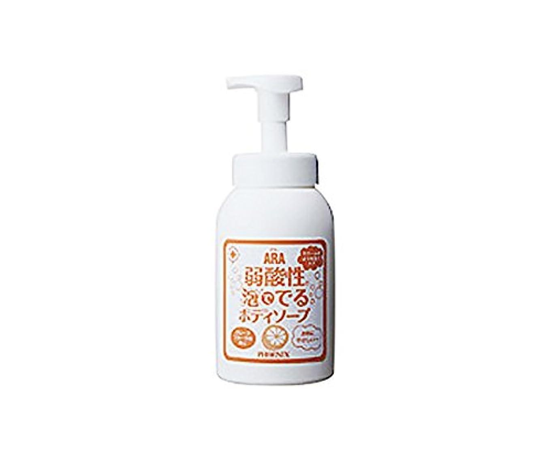 容量香水赤字弱酸性泡ででるボディソープ (アラ) 550mL /7-2238-01