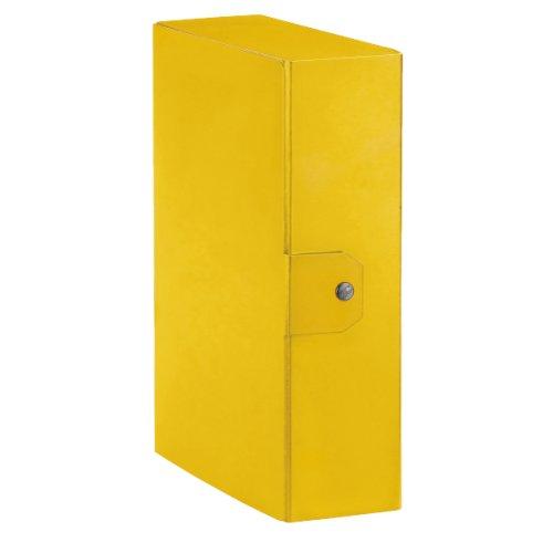 Esselte Ordner-Archivbox für die Archivierung von Dokumenten langfristige, A4, Rücken 10cm, Delso Order Dorso 10 cm gelb