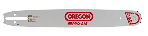 Oregon 153SFHD025 Pro-Am - Sierra de incisión (37 cm, 0,325 pulgada, 1,6 mm)