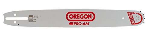 Oregon 208SFHD009 Schwert 20IN PROAMM