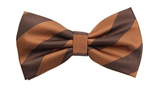 Fabio Farini - Des hommes simple et rayés portent un nœud papillon pour toutes les occasions comme le mariage, la confirmation, le bal de fin d'année