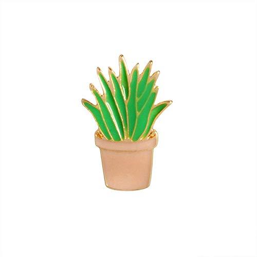 Cactus Piante succulente aloë vera plant van vaas button mantel van denim badge met sieraden