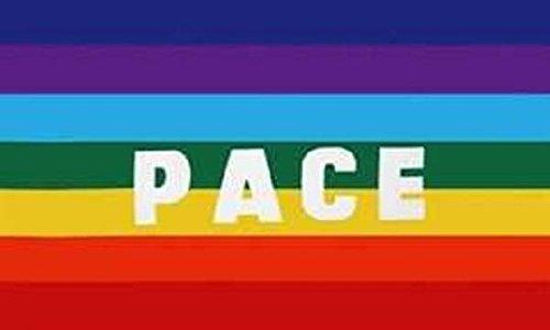 U24 Fahne Flagge Pace Frieden Peace 90 x 150 cm