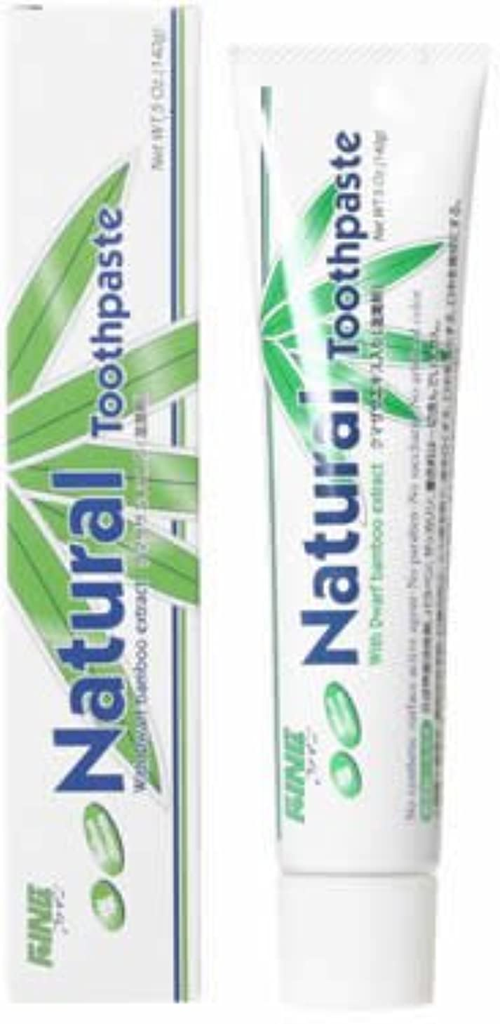 有名促すばかげたファイン(FINE) エパック 21 ニューナチュラル歯磨き 140g