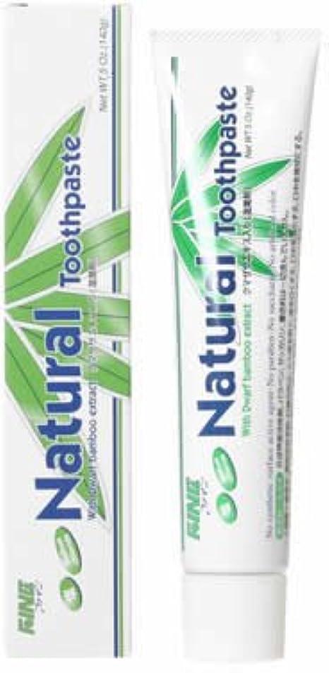 胚芽歯車ピラミッドファイン(FINE) エパック 21 ニューナチュラル歯磨き 140g