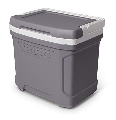 Igloo Profile 16 Kühlbox, 15 Liter, Grau