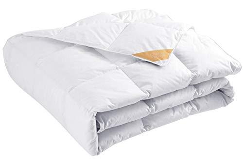 puredown® Sommer Leicht Bettdecke, 135x200cm Daunendecke, Gänseflaum Bettwäsche, 4 Jahreszeiten, Leicht, Öko-Tex