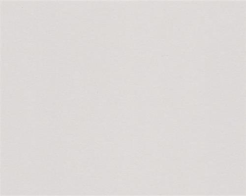 250 Blatt DIN A5 Stahl-Graues farbiges 160g/m² Office-Papier. Hochwertiges Spitzenpapier Copy Laser Inkjet - Flyer Newsletter Poster Faxeingänge Wichtige Mitteilungen Warnhinweise Ordnungssysteme Memos