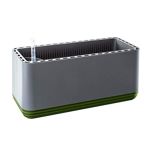 Airy Box - innovadora Maceta purificadora Aire 100%