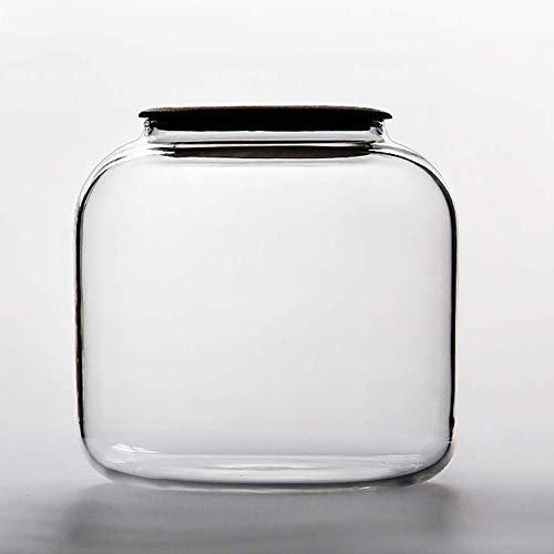 Tarro de regalo Tapas selladas de carrito de té Té flojo de estaño, cristal cocina for guardar objetos de madera Caja con tapas de almacenamiento, latas de té de almacenamiento precintadas for la coci