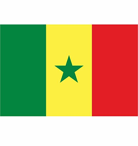 Flagge Senegal - 90 x 150 cm [Misc.]