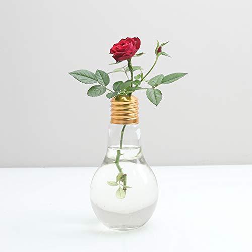 Youkara - Vaso in vetro trasparente a forma di lampadina per piante e piante idroponiche, vaso da fiori