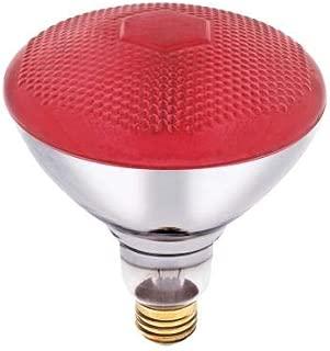 100 Watt, 120 Volt Flood BR38 Incandescent Bug Light Bulb (Red, 2 Pack)