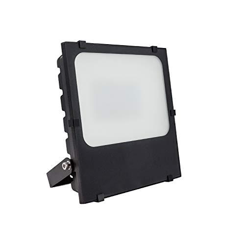 Foco Proyector LED SMD Frost 50W Blanco Frío 6000K-6500K