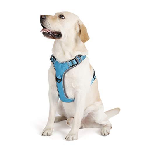 PETTOM Brustgeschirr Hund Gepolstert Hundegeschirr für Kleine Mittelgroße und Große Hunde