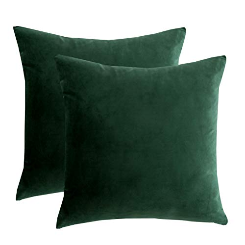 RainRoad Velvet Decorative Throw Pillow Covers Cushion Cover Pillow Case for Sofa Couch Bed Chair ,Soft Square Dark Green Throw Pillows 18x18 Inch,Set of 2