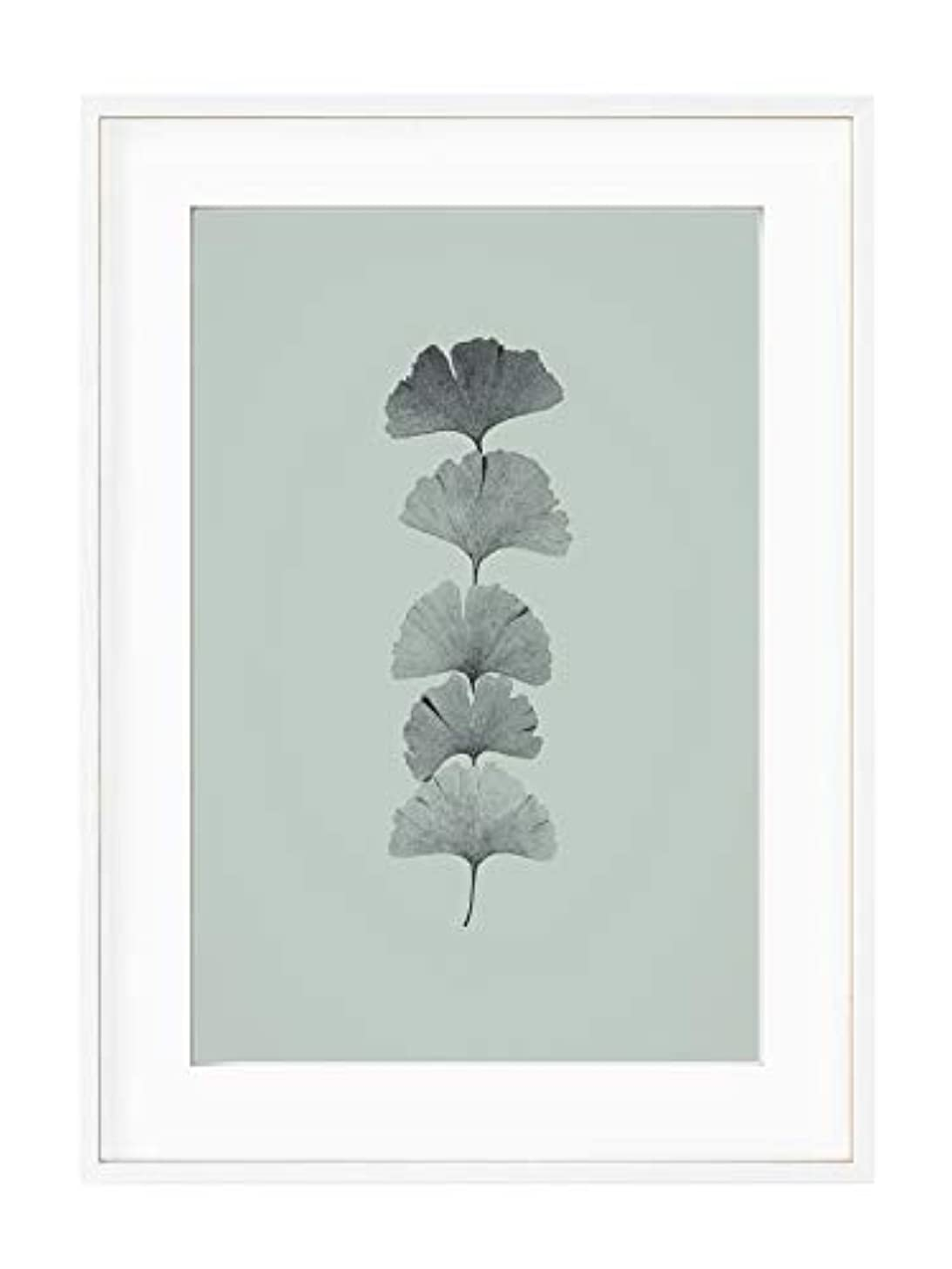 Ginko 2 White Varnished Wooden Frame with Mount, Multicolored, 40x50
