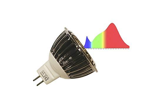 Ogeled CRI 95 GU5.3/Gu10 Spot LED Lampe Strahler 3W neue Vollspectrum Technik Pflanzenlampen Dimmbar A++ (Class 2500K Warmweis, 10x Gu5,3)