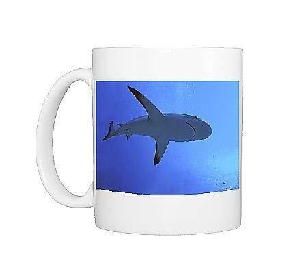 Taza con foto de tiburón gris de arrecife Hay miles de estos tiburones que viven en The Passes into