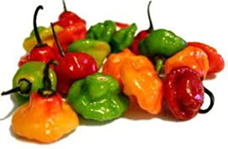 ajies dulces peppers