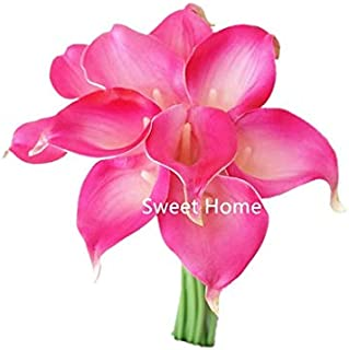 Sweet Home Deco Latex Real Touch 15