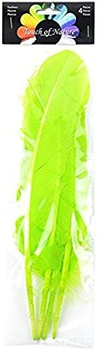 White 12.25 to 13-Inch Touch of Nature 4-Piece Turkey Feather for Art and Craft