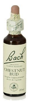 Flores de Bach Originales Chestnut Bud Fb 20 ml (Bach Flowers) by Flores De Bach Originales