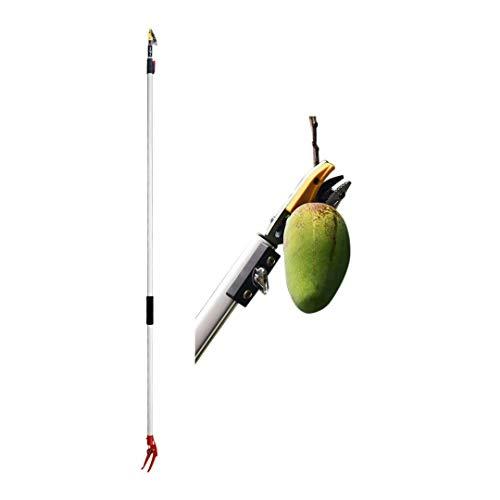 Podadora de árboles telescópica Recogedor de frutas,6.5pies Tijeras de podar de largo...