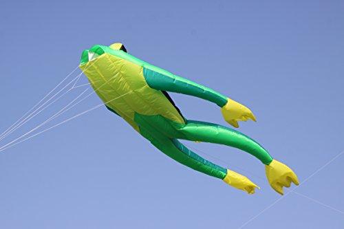 Wolkenstürmer Fritz The Frog Einleiner Drachen ohne Gestänge