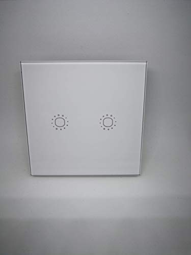 interruptor táctil Wifi Color blanco con 2 Botones Alexa Google Home 250 V