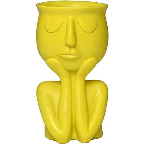 Ulyjcq Flower Pottery, Facial Flower Pot, Irregular Garden Pot, Sculpture With Drain Holes, Ornament In The Office Home Decoration