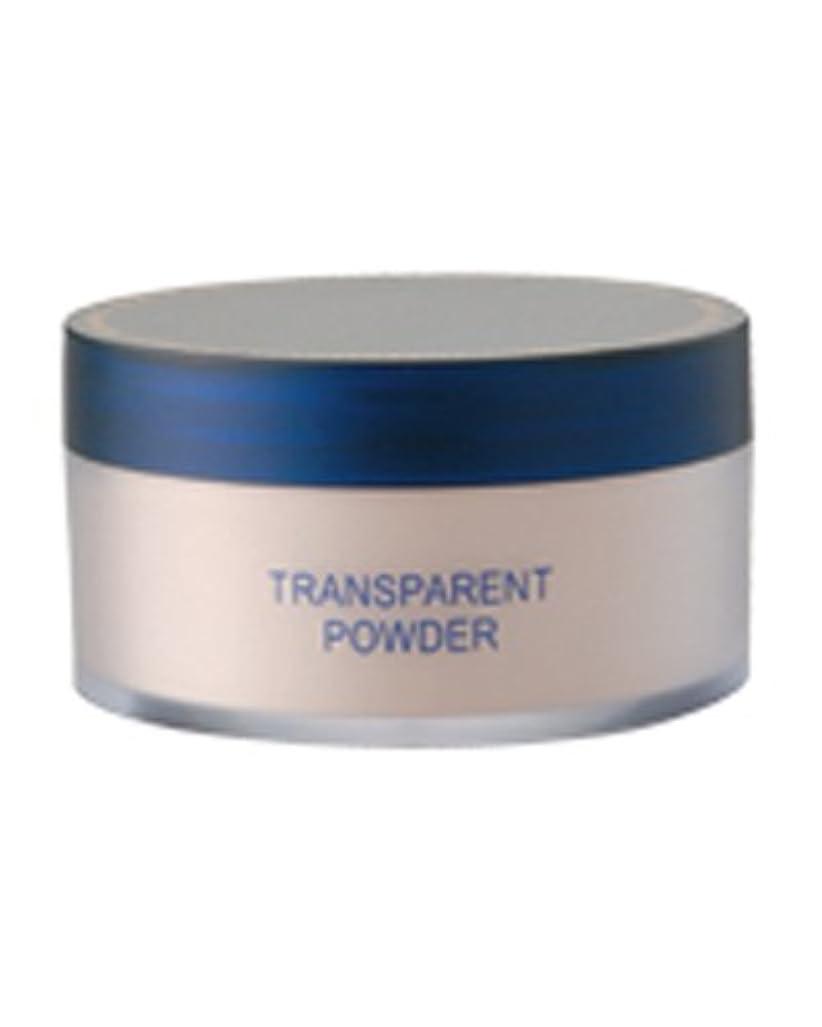 リッチ消費するビットトランスパラントパウダー 30g (粉おしろい パフ付)