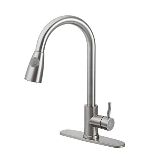 LEADALLWAY Kitchen Faucet with Single Handle, Single Level Stainless Steel Kitchen Sink Faucets with Pull Down Sprayer