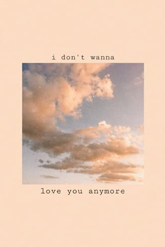 I don't wanna love you anymore - LANY: notebook / journal Blank Lined Ruled 6x9 120 Pages