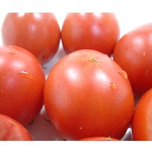 高知県産 徳谷トマト 約300g