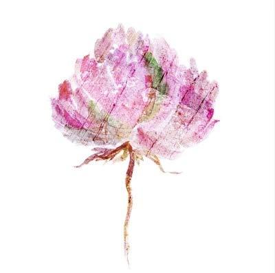 BGFDV DIY peonía Imagen Flor Pintura al óleo Obra de Arte gráfica Lienzo impresión del Cartel Guaderos Arte de la Pared decoración de la Sala de Estar