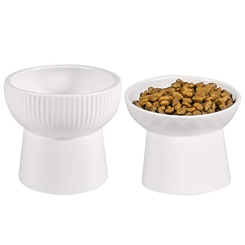 Big Cat Food and Water Bowl
