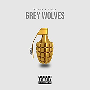 Grey Wolves (feat. R1B4T)