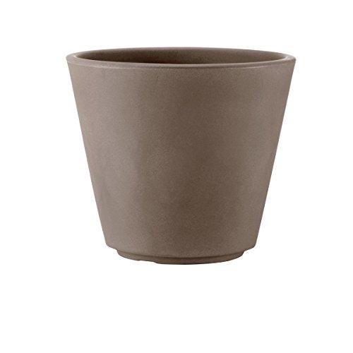Teraplast Ribeira Fioriera, Plastica 100%, Cappuccino, 50 cm